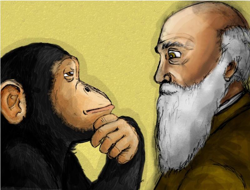 Darwin by urs-obnoxious
