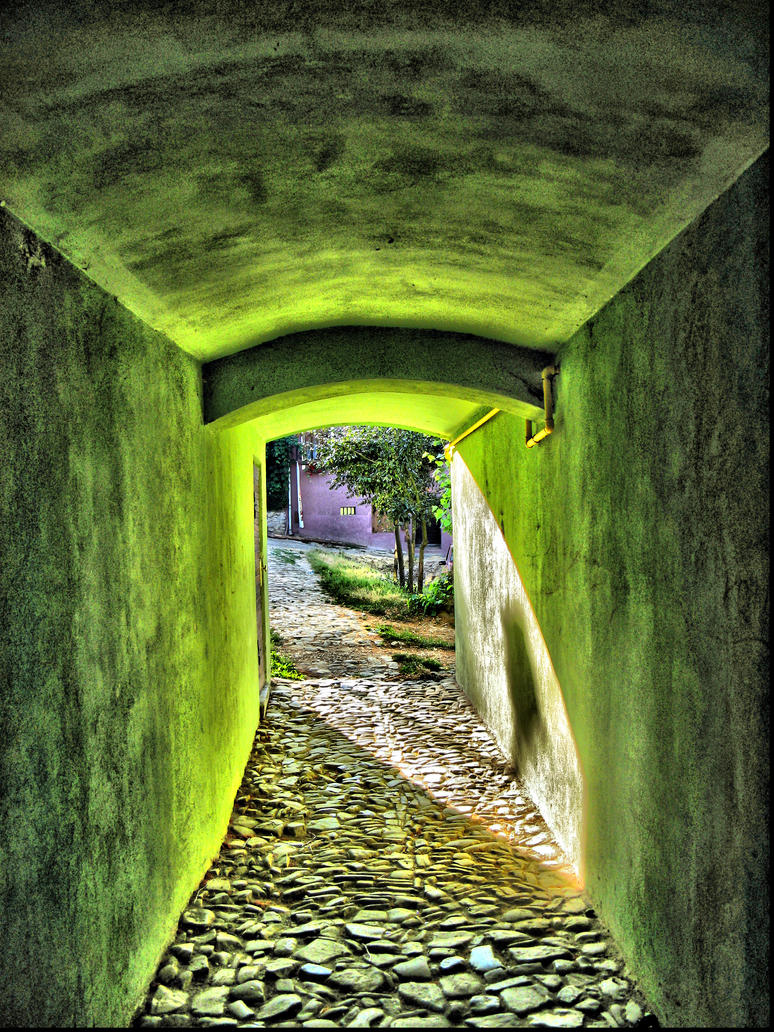 Green tunnel by dccanim
