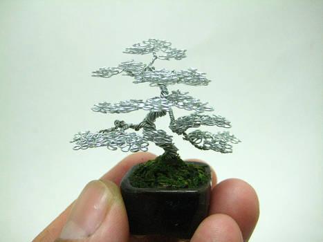Micro Wire Bonsai tree sculpture