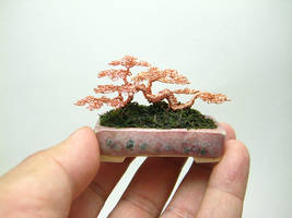 Mame sized raft style wire bonsai sculpture