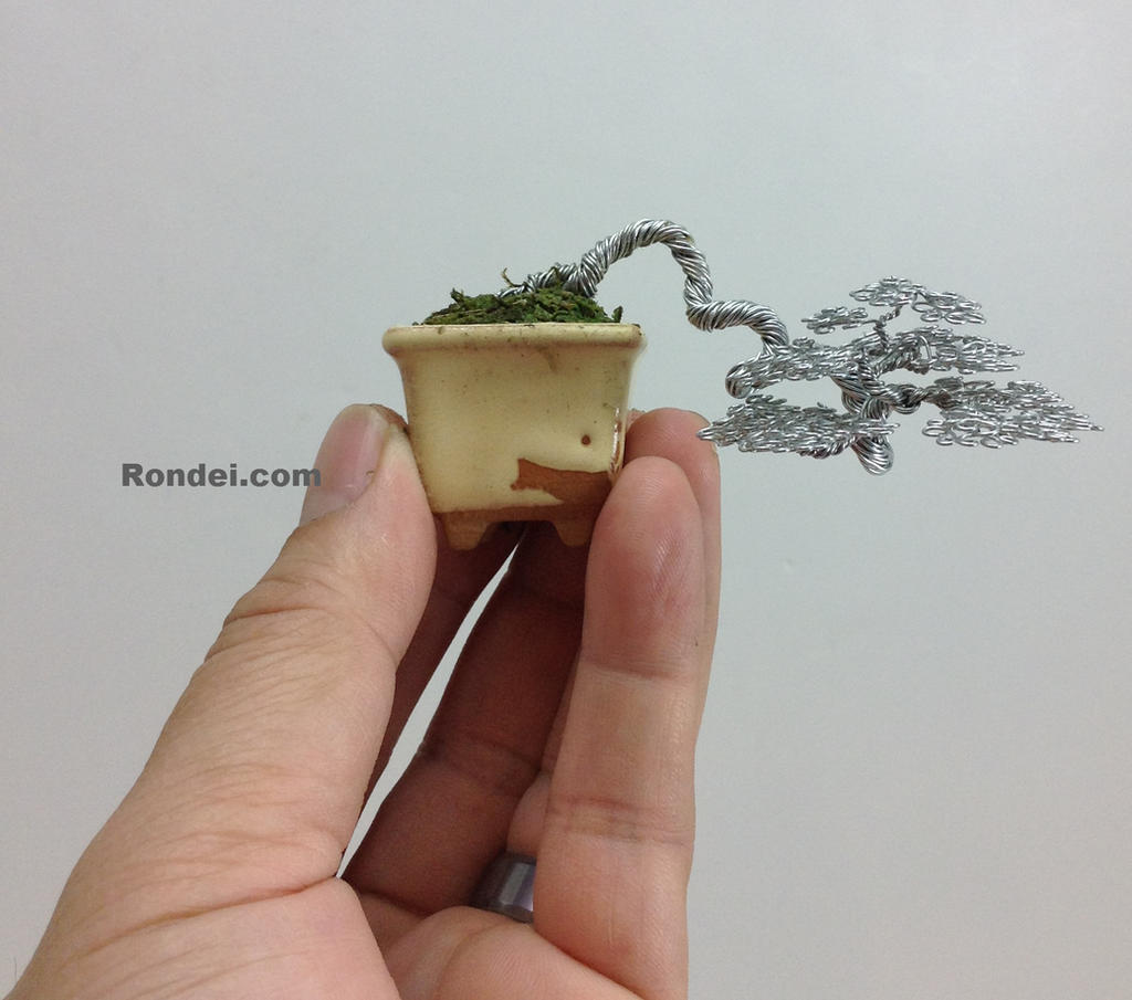 Semi-cascade Wire Bonsai Tree sculpture by Ken To by KenToArt