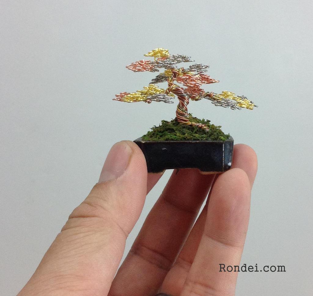 Tricolor Wire Mame Bonsai Tree Sculpture By Ken To By Kentoart On Deviantart