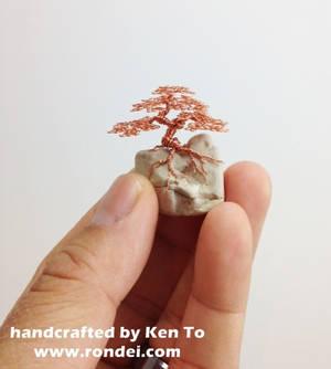 Micro Wire bonsai tree on a rock by Ken To