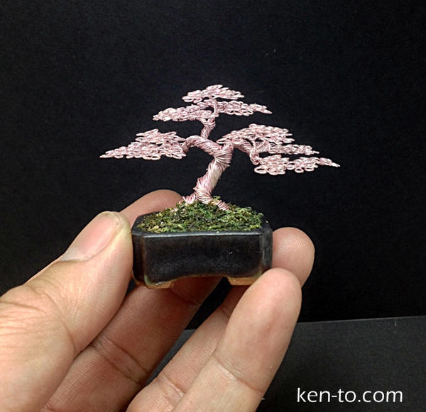 Mame Rose Wire bonsai tree sculpture by Ken To by KenToArt