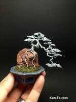 Cascade ROR Wire bonsai tree sculpture by Ken To by KenToArt