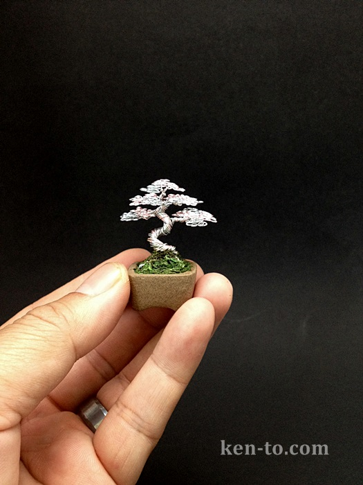 A Micro Rose Silver Wire Bonsai Tree By Ken To By Kentoart On Deviantart