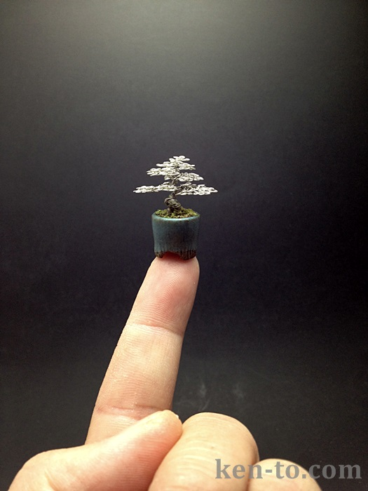 Micro wire bonsai tree sculpture by Ken To by KenToArt