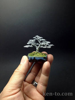 Upright wire bonsai tree sculpture by Ken To