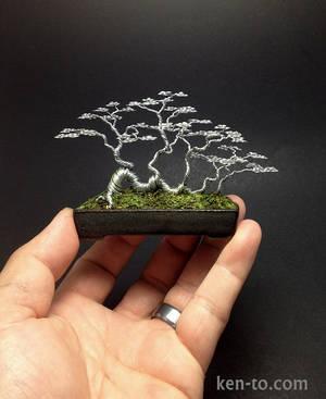 Raft style wire bonsai tree sculpture by Ken To by KenToArt