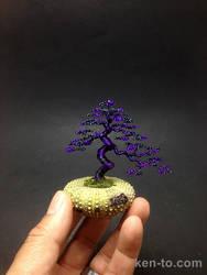 Purple wire bonsai tree by Ken To in urchin shell by KenToArt