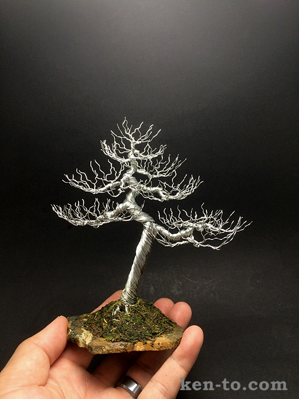large deciduous wire bonsai tree by ken to by kentoart on Types of Deciduous Trees Ficus Bonsai