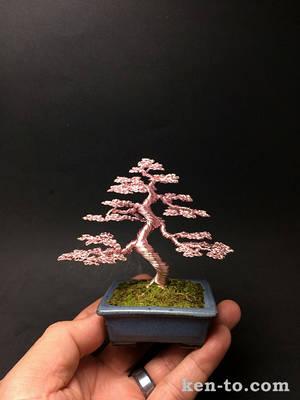 Pink wire mame bonsai tree sculpture by Ken To by KenToArt