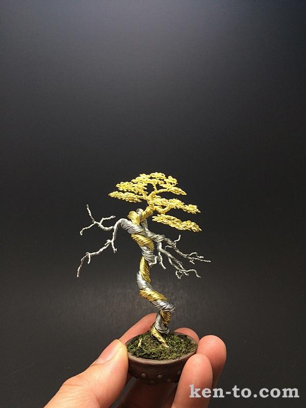 Two-tone deadwood wire bonsai tree by Ken To by KenToArt