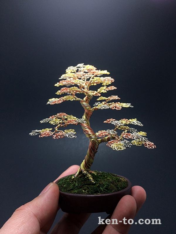 Large 3 color wire bonsai tree by Ken To by KenToArt
