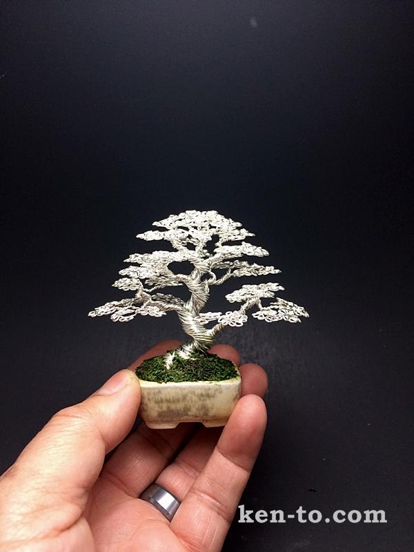 Silver upright wire mame bonsai tree by Ken To by KenToArt