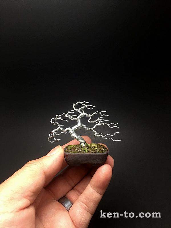 Silver windswept wire bonsai tree by Ken To by KenToArt