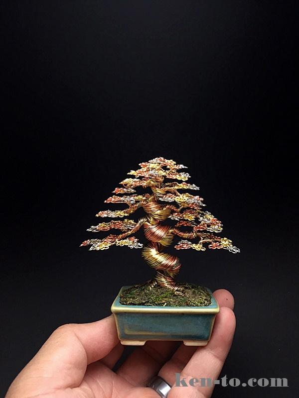 Large 3-color wire bonsai tree by Ken To by KenToArt