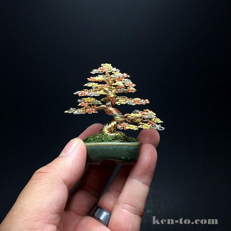 Small 3-color wire bonsai tree by Ken To by KenToArt