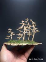 Penjing style forest wire bonsai tree by Ken To by KenToArt