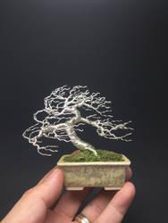 Windswept wire bonsai tree by Ken To by KenToArt