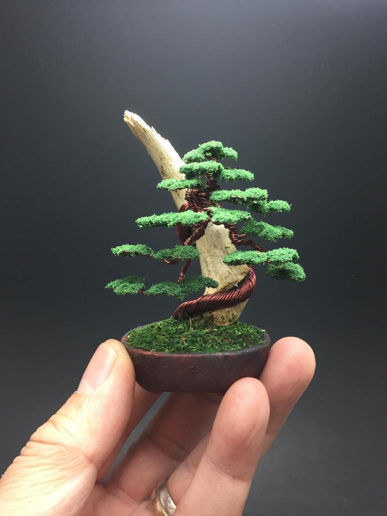 Wire bonsai tree on wood by Ken To by KenToArt