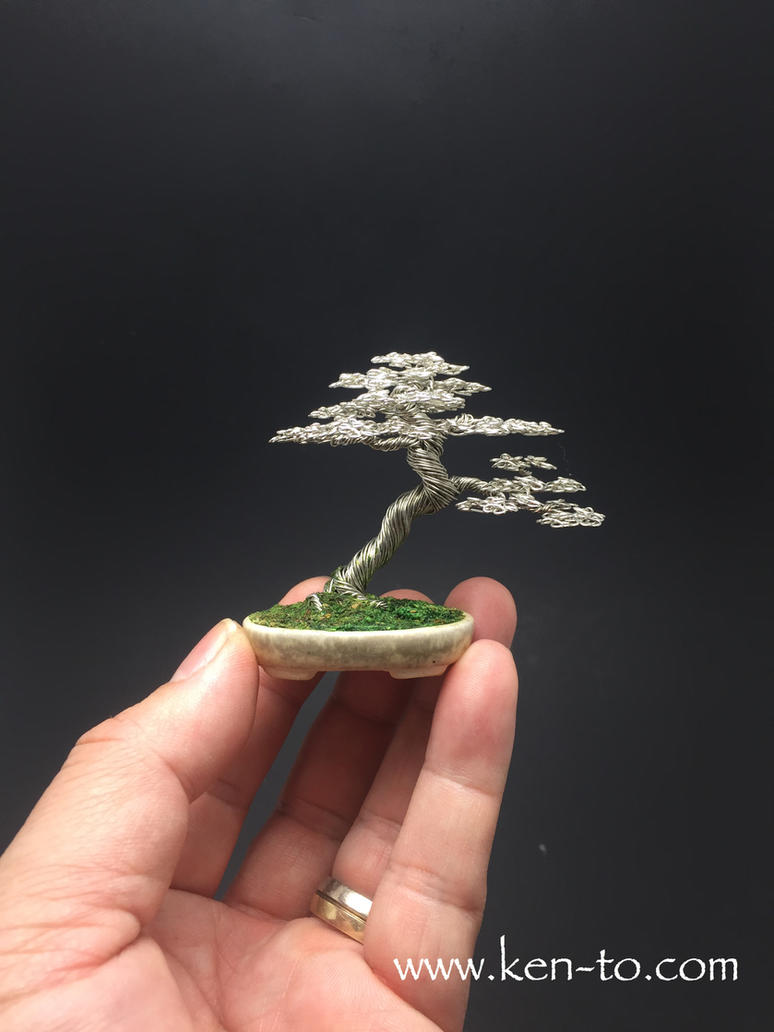 Mini wire bonsai tree by Ken To by KenToArt