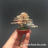 Yamadori style wire bonsai tree by Ken To by KenToArt