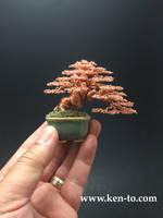 Coiled trunk wire bonsai tree by Ken To by KenToArt