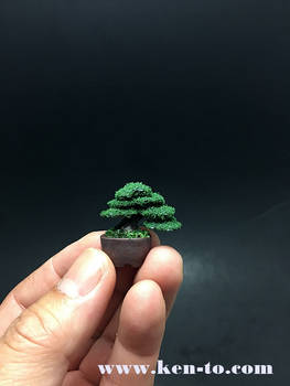 Micro flocked wire bonsai tree by Ken To