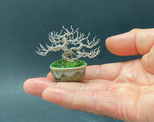 Mini deciduous wire bonsai tree by Ken To