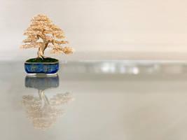 Gold wire bonsai sculpture by Ken To