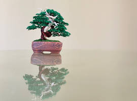 Deadwood mame wire bonsai tree by Ken To