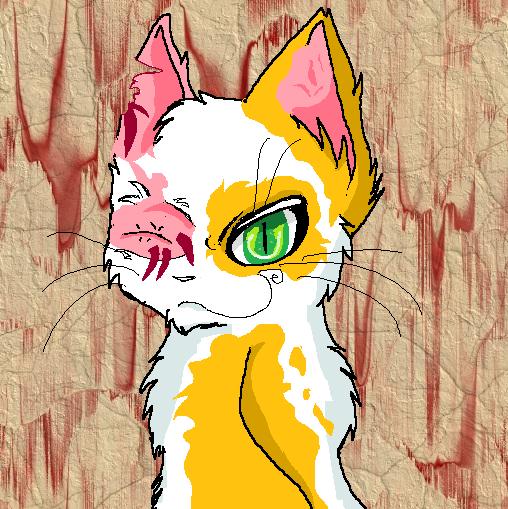 Warriors Into The Wild Manga: Brightheart :warrior Cats: By Flimingow On DeviantArt