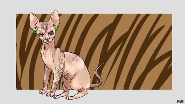 Sphynx cat by Flimingow