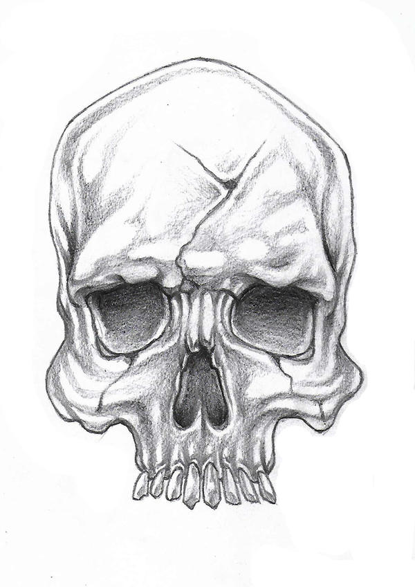 Skull by Dany666