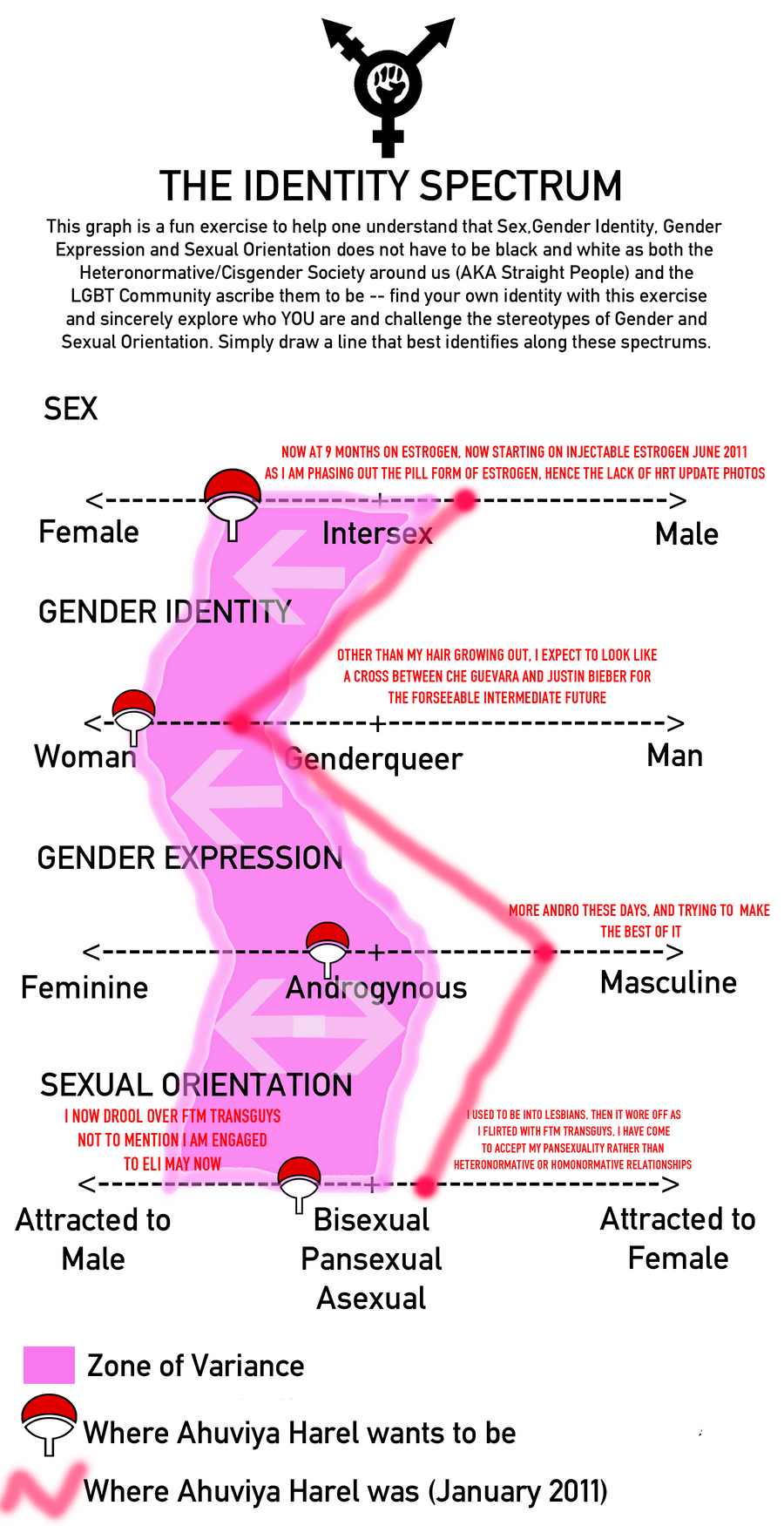a comparison and the difference between gender expression and sexual orientation In gay, straight, and the reason why: the science of sexual orientation the expression of gender-atypical traits — feminine traits in men and masculine.