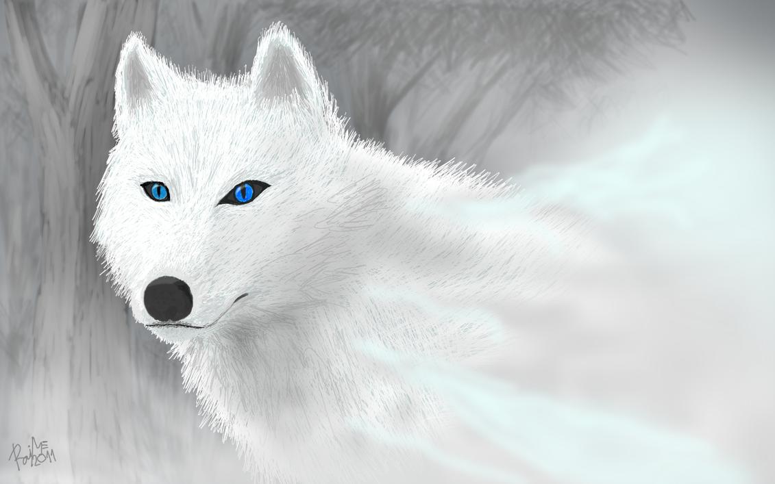 Monoe The White Wolf By Monoe-Mistwalker On DeviantArt
