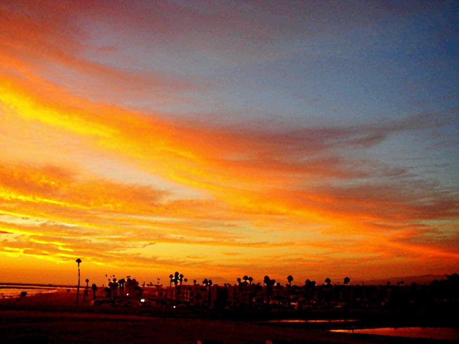 ' California     Sunsets '       # 1005 by ANGELICA-LILY