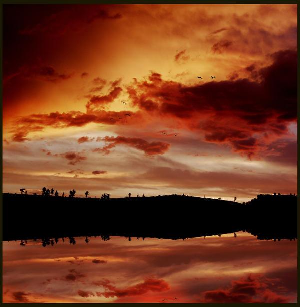 Scarlet Sun by homigl14