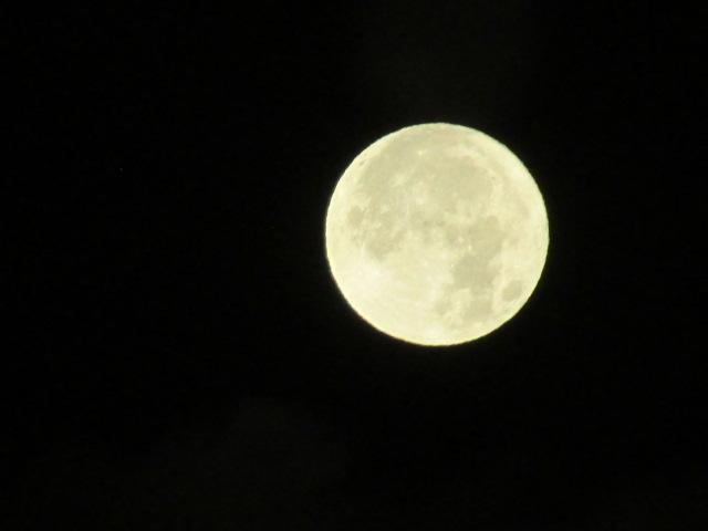 Lunar 043 by Shavanzar