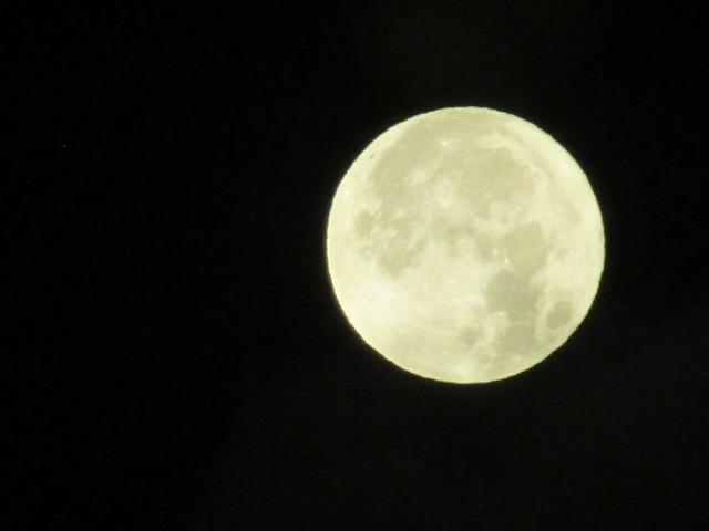 Lunar 045 by Shavanzar
