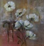white poppies texture