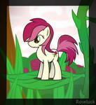 Competition Roseluck
