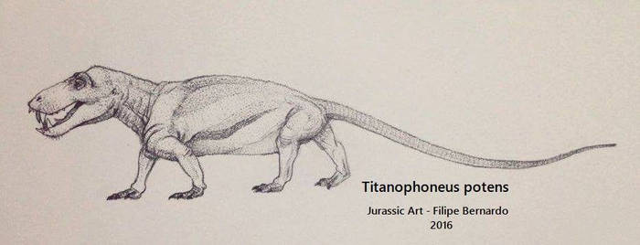 Titanophoneus potens