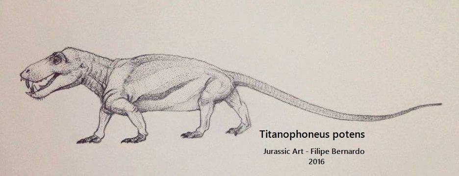 Titanophoneus potens by FilipePicasso