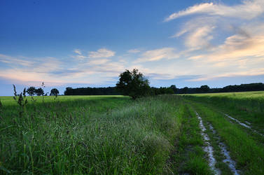 On a Summer Evening... by alban-expressed