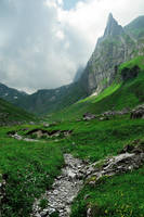 Valley Bottom by alban-expressed