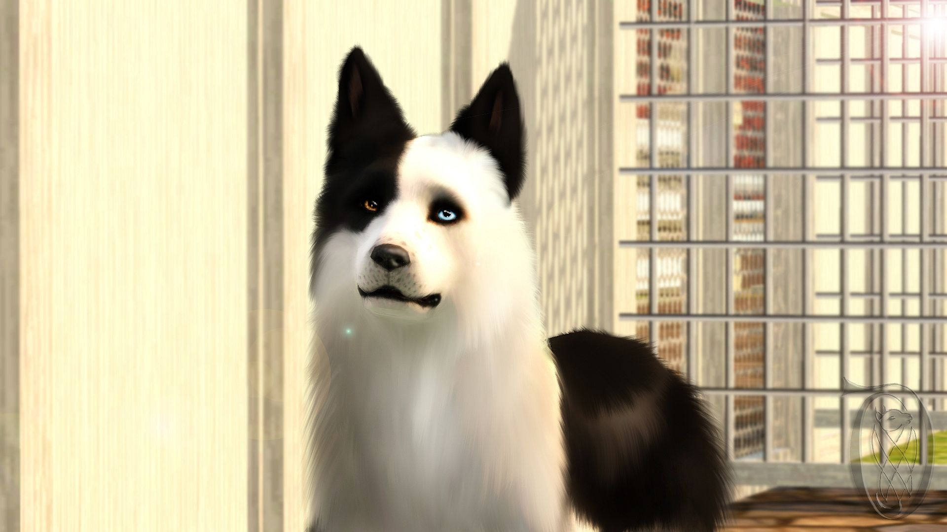 Where Do You Get A Dog In Sims