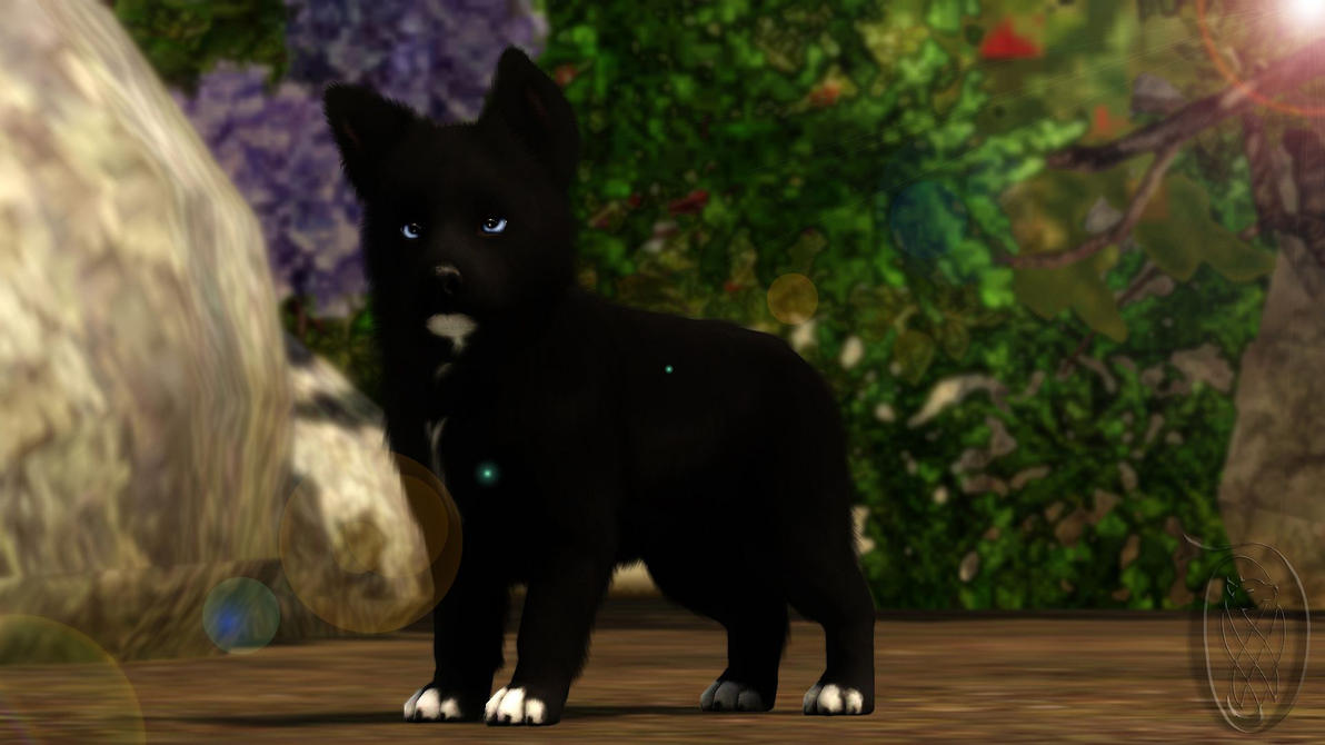 Sims  Pets Cat Left