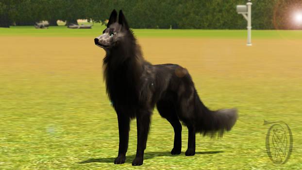 Sims 3 Pets - Krahviik Dog 03